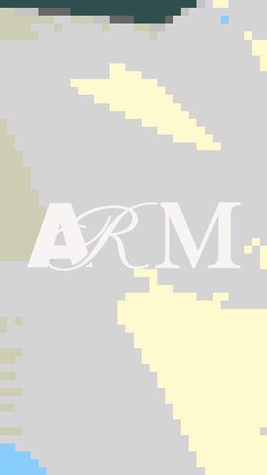 ARM Architecture mobile website