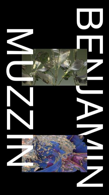Benjamin Muzzin mobile website