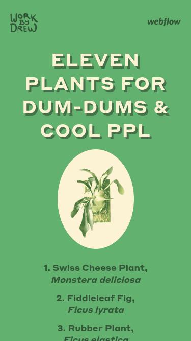 Eleven Plants for Dum-Dums & Cool Ppl mobile website
